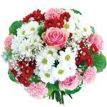 b_200_150_16777215_00___images_Bojanow_2012_Slideshow_9002_kwiaty_dream_8003_001_2.jpg