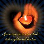 b_200_150_16777215_00___images_serce_do_easy-resize.com.jpg